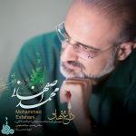 کاور آهنگ Mohammad Esfahani - Daghe Nahan