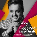 کاور آهنگ Saeed Arab - Are Divoonam