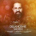 کاور آهنگ Reza Sadeghi - Delkhoshie Sadeh
