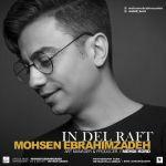کاور آهنگ Mohsen EbrahimZadeh - In Del Raft