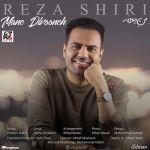 کاور آهنگ Reza Shiri - Mane Divooneh