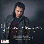 کاور آهنگ Danoosh - Yadam Mimoone
