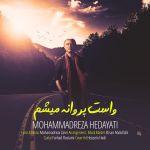 کاور آهنگ Mohammadreza Hedayati - Vasat Parvaneh Misham