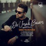 کاور آهنگ Emad Talebzadeh - Dir Umadi Bazam