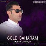 کاور آهنگ Pouya Jahangiri - Gole Baharam