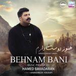 کاور آهنگ Behnam Bani - Hanooz Dooset Daram