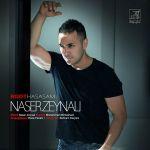 کاور آهنگ Naser Zeynali - Root Hasasam