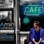 Amin Aminian - Dele Ashegh Pishe