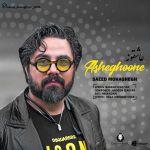 کاور آهنگ Saeed Mohaghegh - Asheghooneh