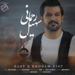 کاور آهنگ Soheil Rahmani - Daste Khudam Nist