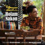 کاور آهنگ Sina Shabankhani - Holam Nakon