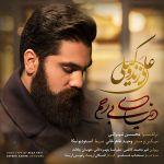 کاور آهنگ Ali Zand Vakili - Donyaye Birahm
