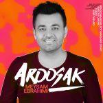 کاور آهنگ Meysam Ebrahimi - Aroosak