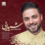 کاور آهنگ Babak Jahanbakhsh - Sheydaei