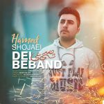 Hamed Shojaei - Del Beband