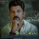 کاور آهنگ Radmehr - Shishe Eshgh