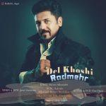 کاور آهنگ Radmehr - Del Khoshi