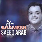 کاور آهنگ Saeed Arab - Aramesh