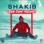 کاور آهنگ Shakib - Dam Dami Nabash