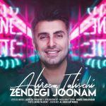کاور آهنگ Alireza Talischi - Zendegi Joonam