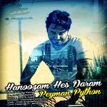 کاور آهنگ Peyman Python - Hanoozam Hes Daram