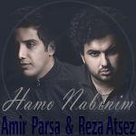 کاور آهنگ Amir Parsa - Hamo Nabinim