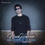 کاور آهنگ Mohammad Jahani - Namehraboon
