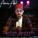 کاور آهنگ Armin Abdi - Tanham Gozasht