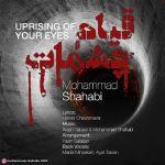 کاور آهنگ Mohammad Shahabi - Ghiame Cheshmat