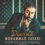 کاور آهنگ Mohammad Yavari - Divoone