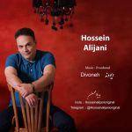 کاور آهنگ Hossein Alijani - Divooneh