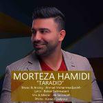 کاور آهنگ Morteza Hamidi - Tardid