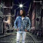 کاور آهنگ Siavash Bokaei - In Khat In Neshoon