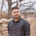 کاور آهنگ Hamed Vafaee - Dokhtare Mordadi