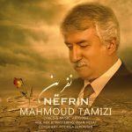 کاور آهنگ Mahmoud Tamizi - Nefrin