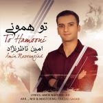 کاور آهنگ Amin Nazernejad - To Hamooni