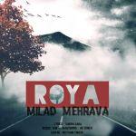 کاور آهنگ Milad Mehrava - Roya