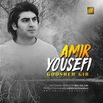 کاور آهنگ Amir Yousefi - Goosheh Gir