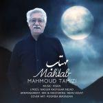 کاور آهنگ Mahmoud Tamizi - Mahtab
