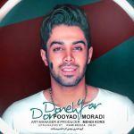 کاور آهنگ Pooyad Moradi - Dordoneh Yar
