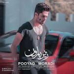 کاور آهنگ Pooyad Moradi - Zire Baron