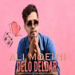 کاور آهنگ Ali Moeini - Delo Deldar