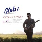 کاور آهنگ Navid Fard - Nabz