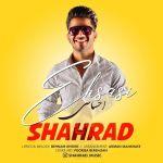 کاور آهنگ Shahrad - Ehsasi