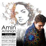 Amin Aminian - Zahed