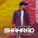 کاور آهنگ Shahrad - To Fargh Mikoni Vasam