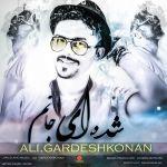 کاور آهنگ Ali Gardeshkonan - Shodei Janam