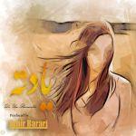 Amir Barari - Yadete