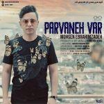 کاور آهنگ Mohsen EbrahimZadeh - Parvaneh Var