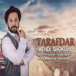 کاور آهنگ Mehdi Shokuhi - Tarafdar